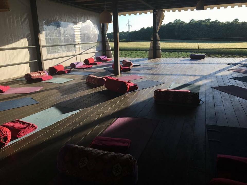 verblijf tijdens de yin yoga medicine - the flower of life